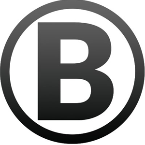 BlockMason Credit Protocol kopen