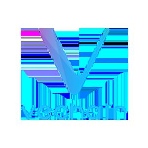 VeChain kopen